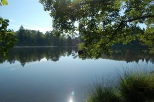 Le lac de St Priest de Gimel