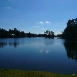 L'étang de Brach
