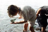 Un enfant observe les moustiques qu'il a capturé
