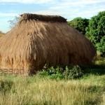 Classe Eco-Habitat