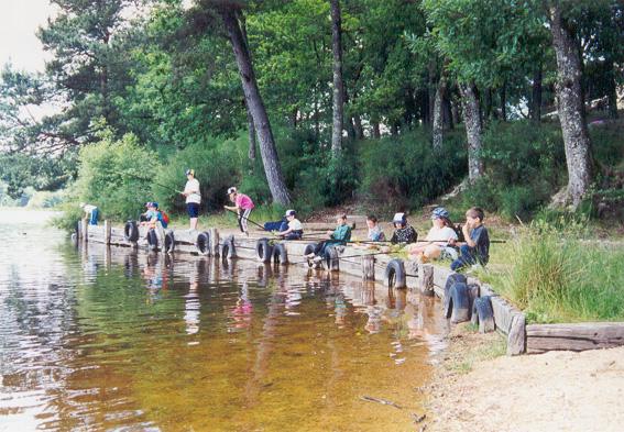 Pêche au bord de l'étang